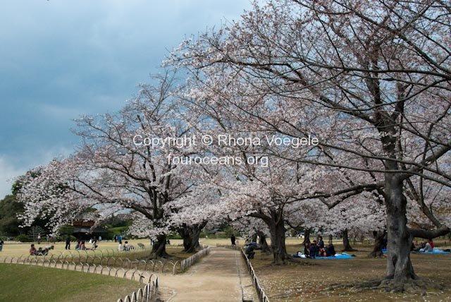 2009_04_01-046-okayama.jpg