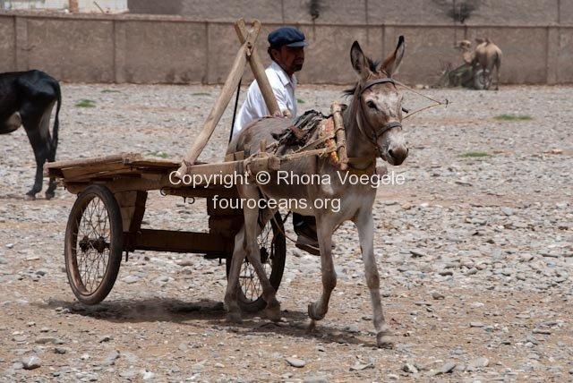 2009_06_28-kashgar-404.jpg