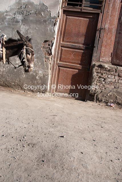 2009_07_05-hotan-107.jpg