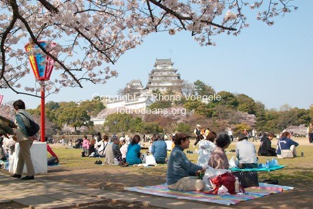 2009_04_06-034-himeji.jpg