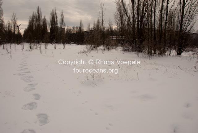 2010_01_19-chernobyl-114.jpg